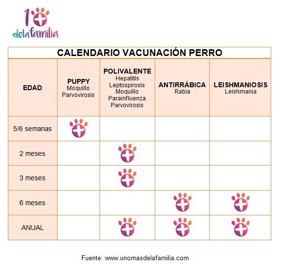 Calendario Vacunación Perros 1+delaFamilia 2017